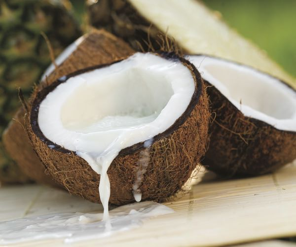 Organic Coconut Ingredients