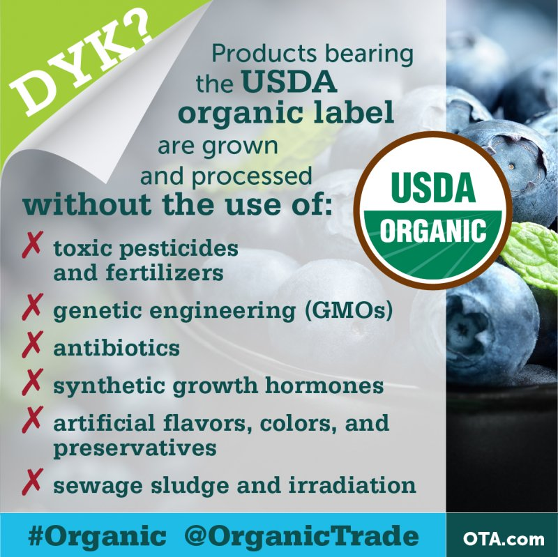 How is organic food processed?